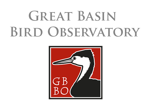 GBBO Logo